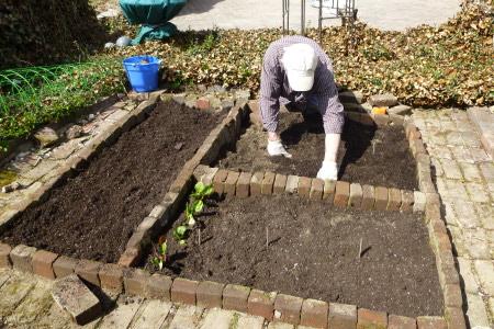 Installing Backyard Garden