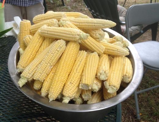 Raw Corn520